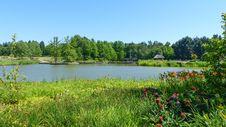 Free Vegetation, Nature, Nature Reserve, Lake Royalty Free Stock Images - 118871839