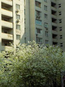 Free Building, Urban Area, Residential Area, Tree Stock Photo - 118872390