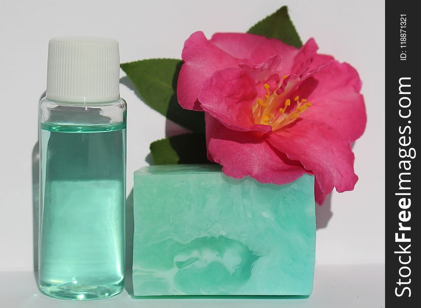 Flower, Product, Petal, Liquid