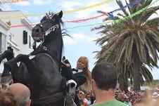 Free Horse, Horse Harness, Vertebrate, Horse Like Mammal Stock Images - 118940704
