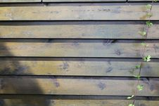 Free Wood, Wall, Wood Stain, Plank Stock Photography - 118940892