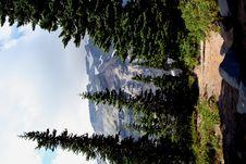 Free Mount Rainier Trail Royalty Free Stock Photography - 1195097