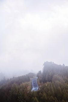 Free Highway In The Middle Of Forest Covered In Fog Stock Photo - 119007910