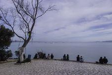 Free Sky, Tree, Shore, Sea Stock Photo - 119035080