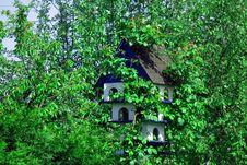 Free Green, Nature, Vegetation, Nature Reserve Stock Image - 119411331