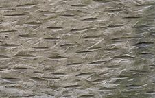 Free Wall, Stone Carving, Texture, Geology Stock Images - 119411584