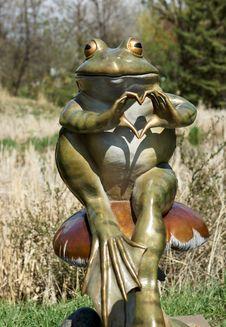Free Ranidae, Frog, Amphibian, Vertebrate Stock Photography - 119411852
