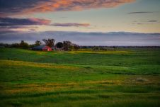 Free Grassland, Sky, Field, Prairie Royalty Free Stock Photos - 119411928