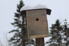 Free Birdhouse, Winter, Snow, Wood Royalty Free Stock Images - 119412999