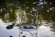 Free Splat Of Water Photo Stock Images - 119467494