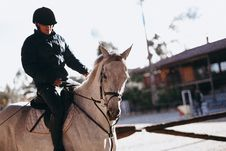 Free Man Riding On Horse Stock Photography - 119467532
