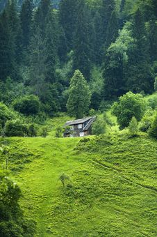 Free Brown Wooden House Surrounded By Green Trees Royalty Free Stock Photos - 119467618