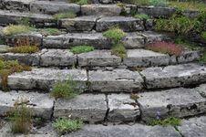 Free Wall, Stone Wall, Rock, Grass Stock Photo - 119767100