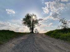 Free Road, Sky, Cloud, Tree Stock Images - 119767134