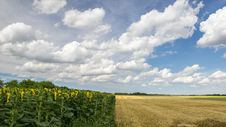 Free Sky, Field, Cloud, Grassland Royalty Free Stock Images - 119866079
