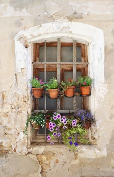 Free Flower, Window, Wall, Floristry Stock Photography - 119867092