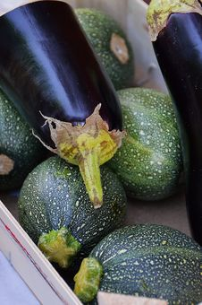 Free Vegetable, Produce, Cucurbita, Cucumber Gourd And Melon Family Royalty Free Stock Photography - 119867127