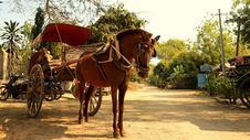 Free Carriage, Horse And Buggy, Chariot, Cart Stock Photos - 119960403