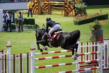 Free Show Jumping, Horse, English Riding, Equestrianism Stock Photography - 119960432