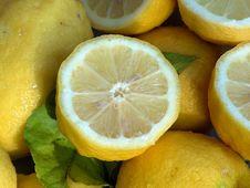 Free Lemon, Citrus, Yellow, Citric Acid Stock Photos - 119961023