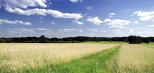 Free Grassland, Sky, Field, Cloud Royalty Free Stock Photo - 119961785