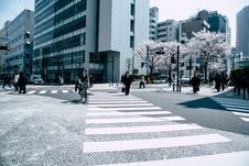 Free People Crossing Pedestrian Lane Royalty Free Stock Photo - 119999875