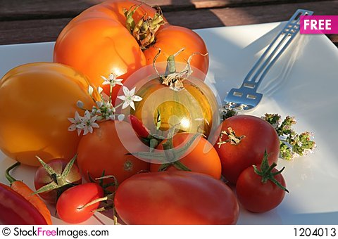 Free Summerly Harvest 9 Stock Photos - 1204013
