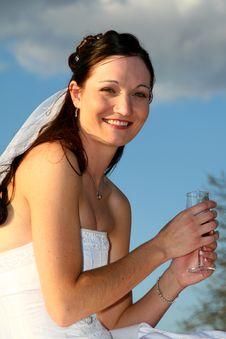Champaign Bride Stock Photo