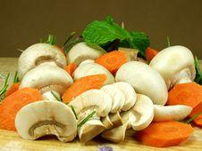 Free Mushrooms Stock Photos - 1202893