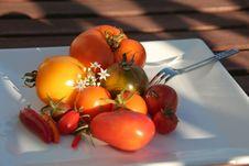 Free Summerly Harvest 4 Stock Image - 1203731