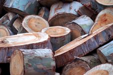 Free Wooden Logs Stock Photos - 1208433