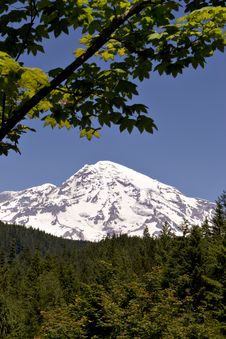 Free Mount Rainier 2 Stock Photo - 1209150