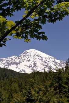 Mount Rainier 2 Stock Photo