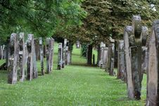 Free Tree, Grass, Cemetery, Outdoor Structure Stock Photo - 120115330