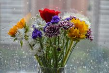 Free Assorted Flowers In Clear Glass Vase Placed Beside Glass Window Royalty Free Stock Images - 120192619