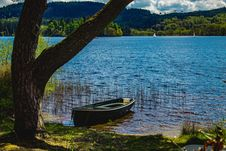 Free Green Dinghy On Body Of Water Near Green Tree Stock Photo - 120361140