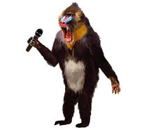 Free Fur, Old World Monkey, Mandrill, Fictional Character Stock Photo - 120482950