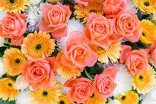 Free Flower, Flower Arranging, Floristry, Yellow Stock Image - 120483741
