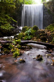 Free Waterfalls And Green Leafed Trees Stock Photos - 120524143
