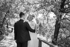 Free Bride And Groom About To Kiss Standing Under Tree Stock Images - 120633234