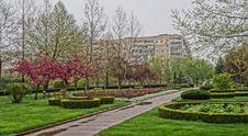 Free Garden, Tree, Plant, Botanical Garden Stock Photography - 120654292