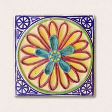 Free Flower, Petal, Circle Stock Images - 120654624
