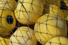 Free Yellow, Football, Net, Strings Stock Photos - 120655103
