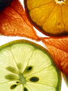 Free Transparent Slices Of Citrus Royalty Free Stock Images - 12084539