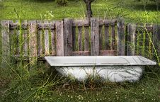 Free Grass, Tree, Bench, Wood Royalty Free Stock Images - 120958019