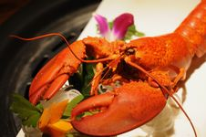 Free Seafood, American Lobster, Lobster, Decapoda Royalty Free Stock Photo - 120958535
