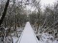 Free The Winter Bridge Stock Photos - 1216123