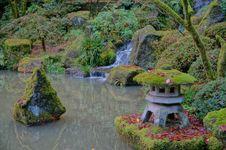 Free Nature, Vegetation, Water, Botanical Garden Stock Photos - 121057993