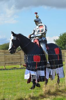 Free Horse, Horse Harness, Horse Like Mammal, Stallion Royalty Free Stock Image - 121058026