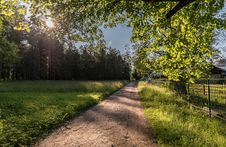 Free Path, Nature, Tree, Sky Stock Image - 121058091